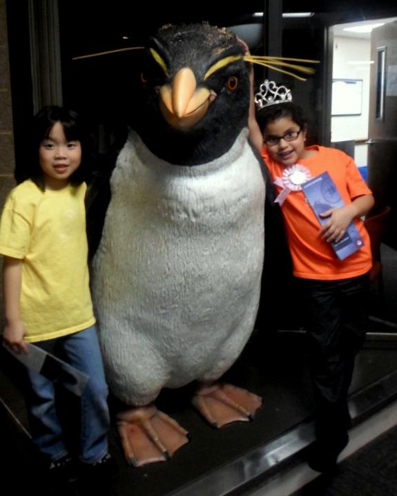 Fun at Shedd Aquarium Chicago