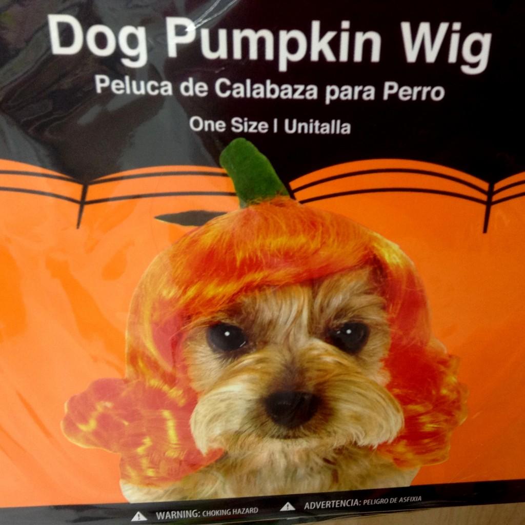 Dog Pumpkin Wig