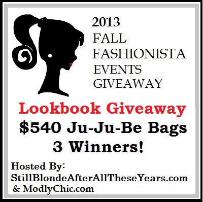 Fall-Fashionsta-Lookbook-2013