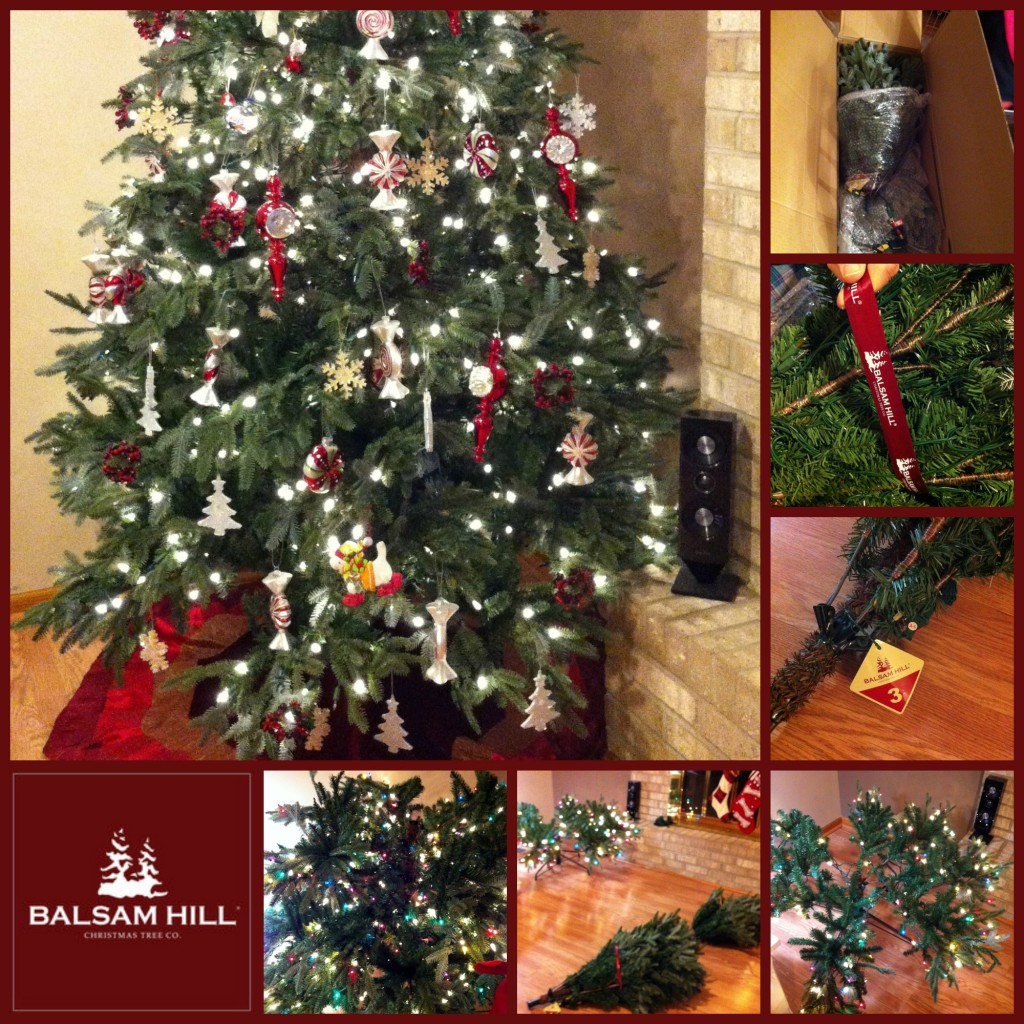 Where To Buy Balsam Hill Christmas Trees: Color Vs Clear: The Great Christmas Tree Light Debate