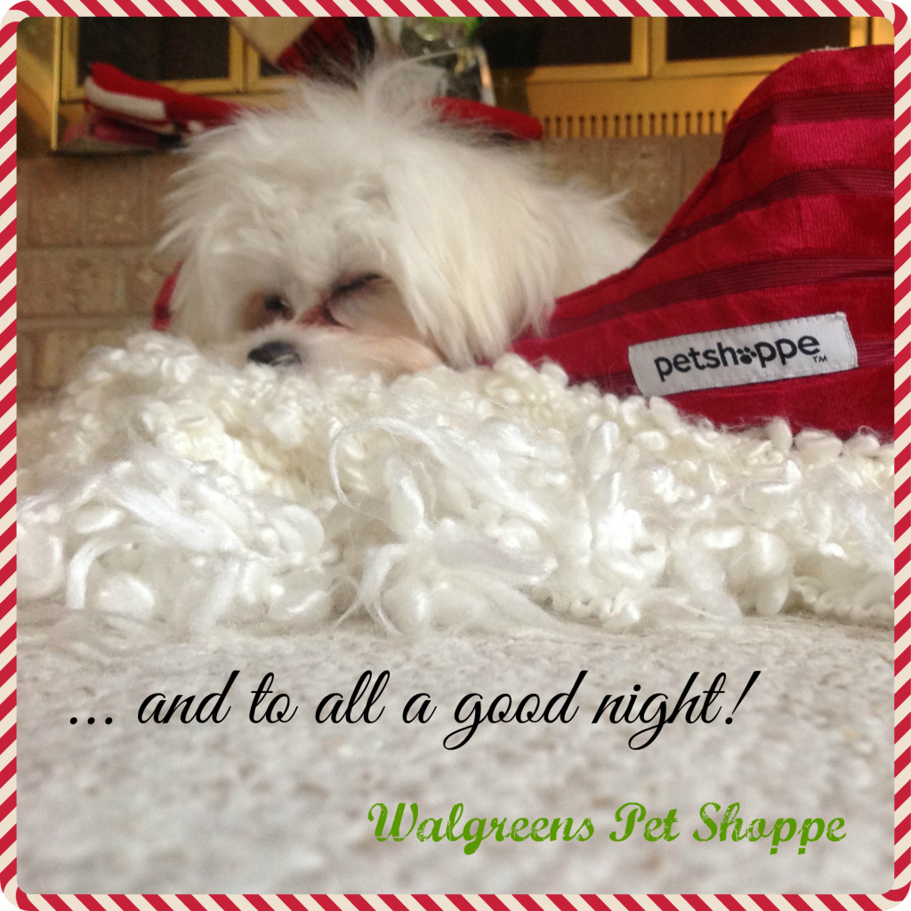 Walgreens-HappyAllTheWay-Pet-Shoppe-Creative-Gift-Ideas-Shop-Good-Night2-pm