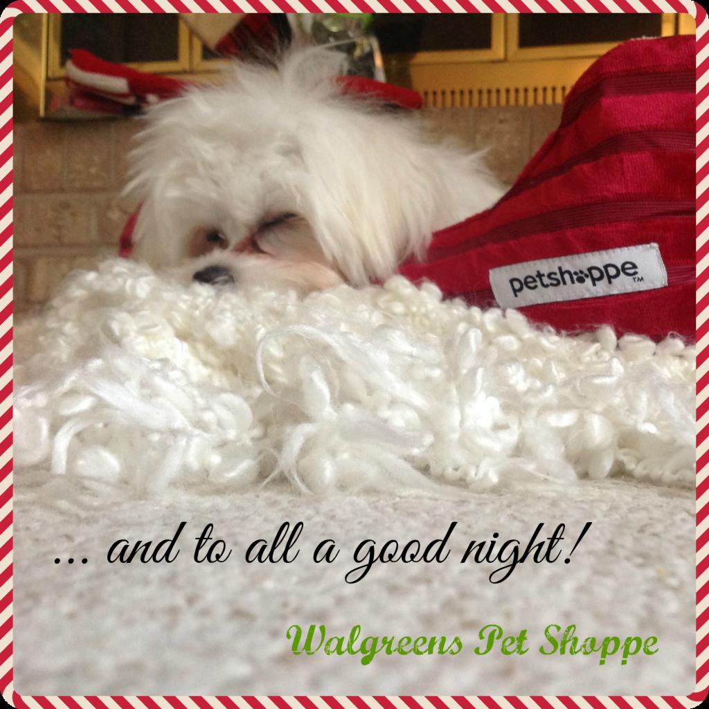 Walgreens-HappyAllTheWay-Pet-Shoppe-Creative-Gift-Ideas-Shop-Good-Night2-pm