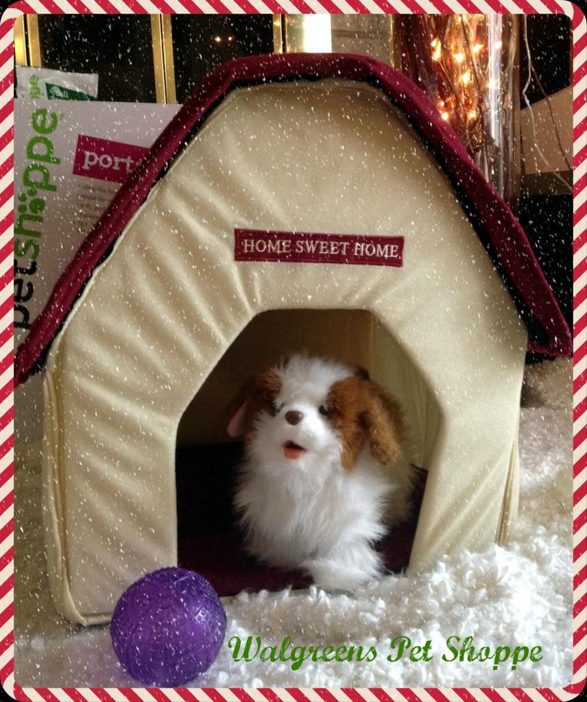 Walgreens-HappyAllTheWay-Pet-Shoppe-Home-Sweet-Home-Shop-pm2