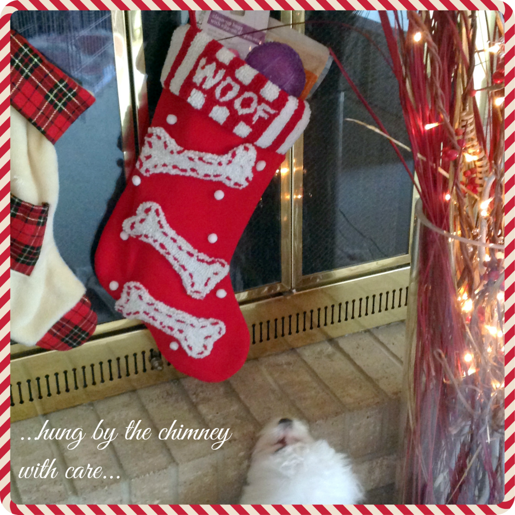 Walgreens-HappyAllTheWay-Pet-Shoppe-Stocking-Shop-pm