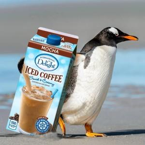 international delight penguin