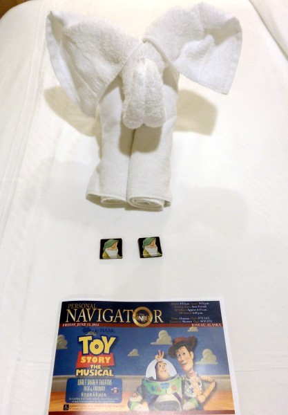 #DisneyCruise-#Alaska-Disney Wonder-Towel Animal-Navigator
