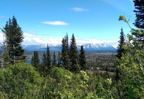 #DisneyCruise-Disney Wonder-#Alaska-Yukon