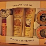 Burt's Bees' Tips and Toes Kit from Walmart