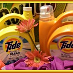 Stock Up and Save Tide Bounty Daisy