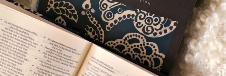 ESV Jornaling Bible