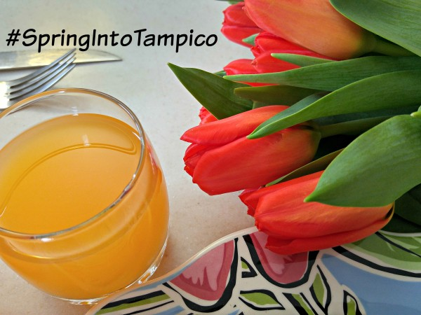 Tampico March #DrinkTampico #SpringIntoTampico Spring Quiche Punch and Tulips