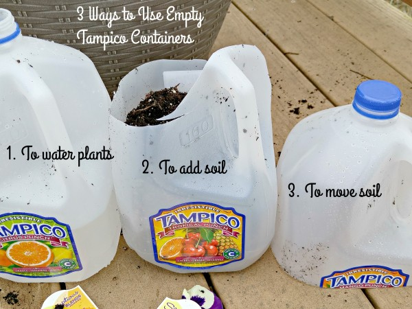 #LoveYourColorfulWorld 3 Ways To Use Empty Tampico Juice containers planting flowers
