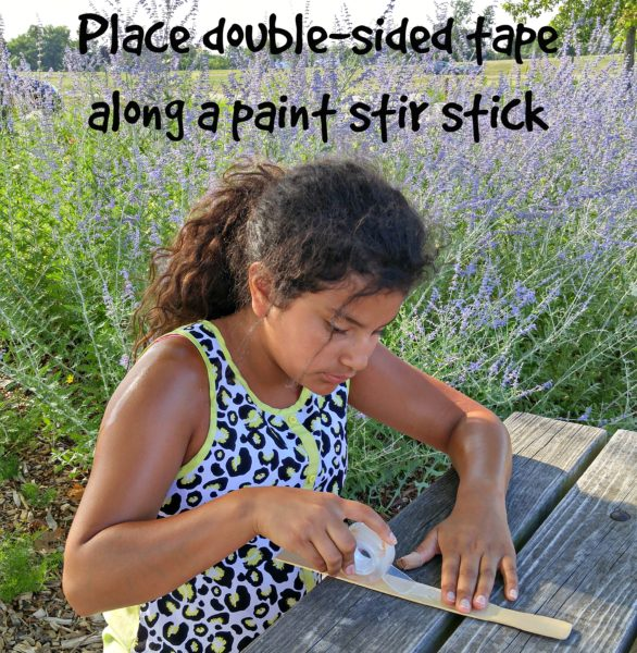 Outdoor Learning Activities Collection Stick - DoubleSided Tape