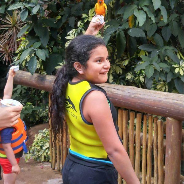 maya in aviary