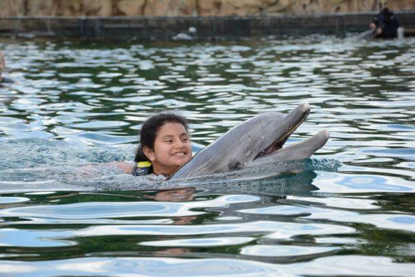 maya with dolphin