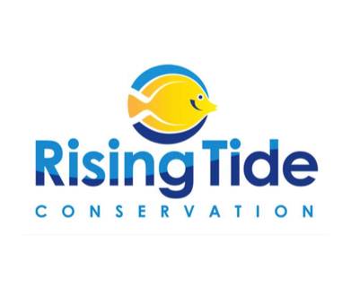 rising tide logo picture